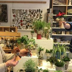 Künstler sammeln mit Pflanzenköpfen Spenden